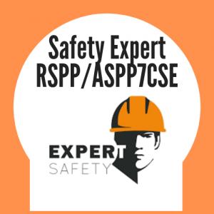 SAFETY EXPERT : Corsi Formazione e Aggiornamenti RSPP/ASPP/CSE - Modalità Formazione a Distanza Integrata - Per informazioni Numero Verde 800-089590
